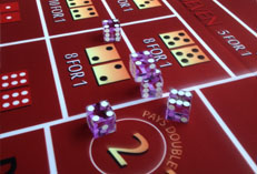 Craps (Dice) Catering Florida Fun Casino Party. This is the best entertainment for any holiday: birthday, wedding, bachelor party, presentation,Blackjack party in the office or on the ...